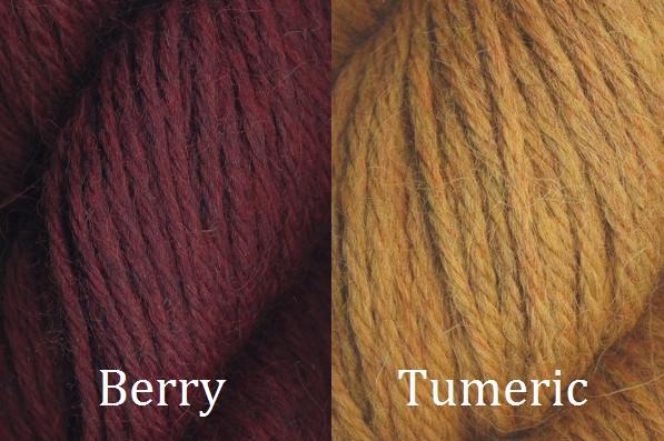 Berry Tumeric