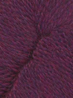 Deep Plum Passion 12