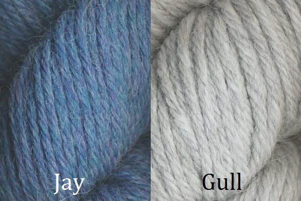 Jay Gull