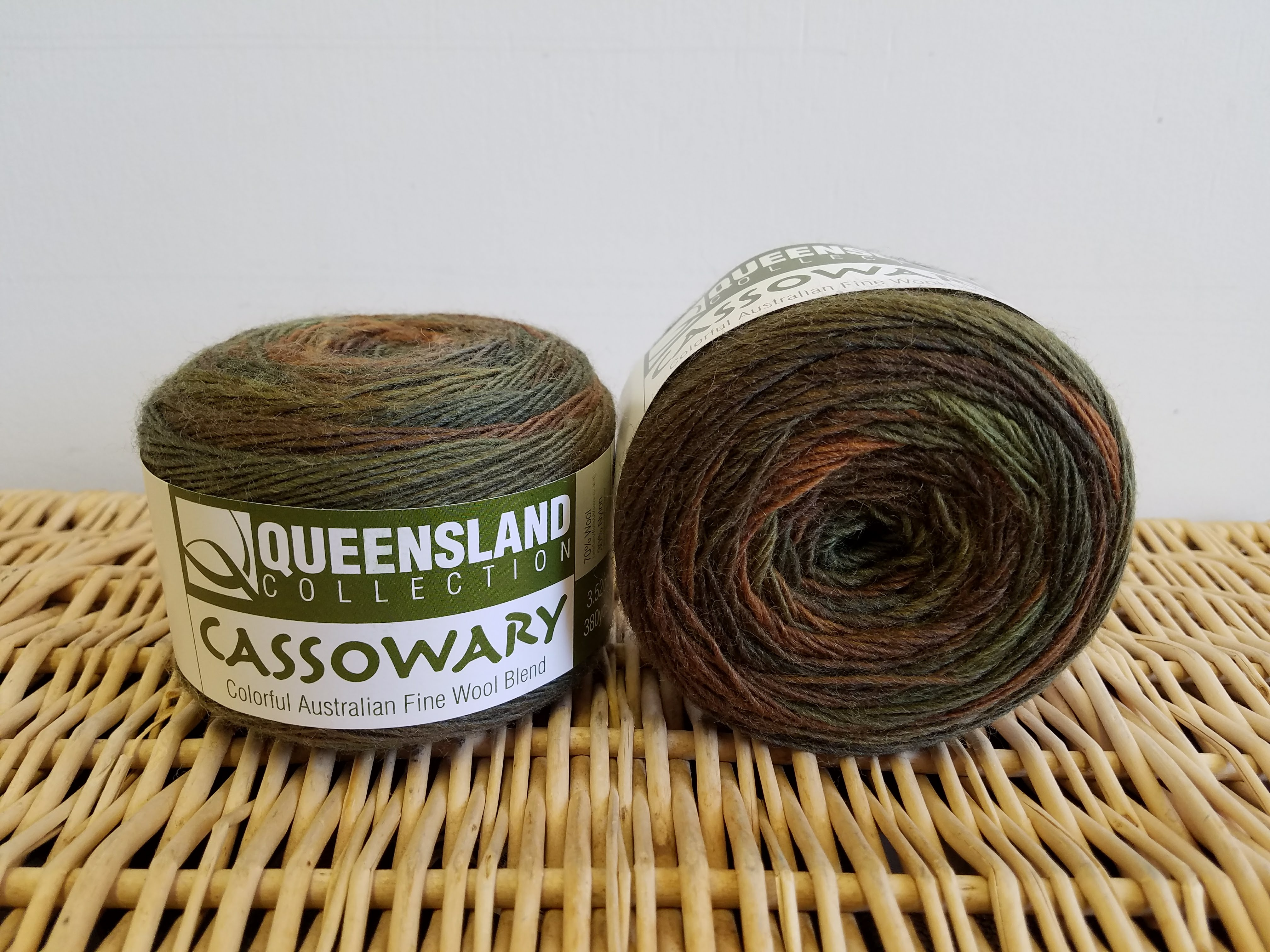 Cassowary by Queensland Collection